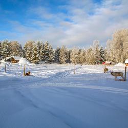 Lapland 6 Joop Lankhaar
