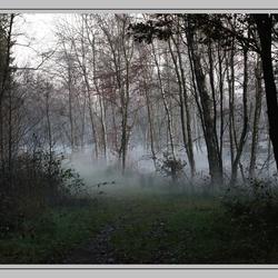 Mist op een afstand