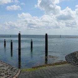haven van West Terschelling