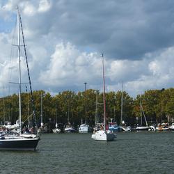 Sail Enkhuizen