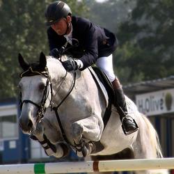 Springend paard