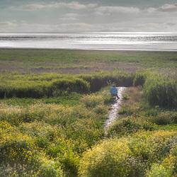 Schilderen aan de Waddenzeekust.....