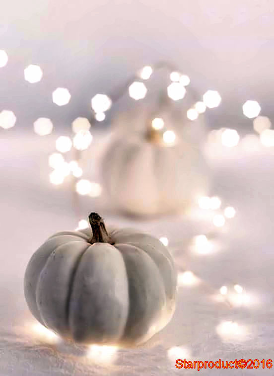 knoflook - Een proef gedaan door een knoflook voor en een knoflook achter op een tafel met witte kerstlampjes en op een witte tafel te fotograferen. O