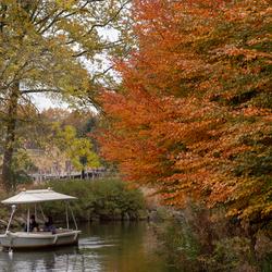 herfstkleuren Efteling