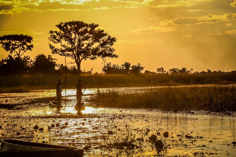 Traditionele Mokoro's in de Okavango Delta - Traditionele Mokoro's in de Okavango Delta
