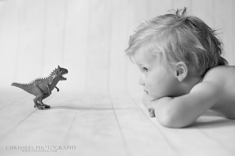 Dino -