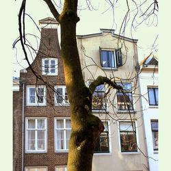 Utrechtse grachtenhuisjes