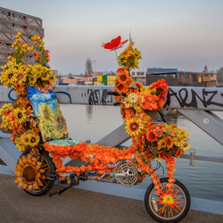 Amterdamse fiets