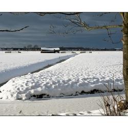 Sneeuw richting de duinen