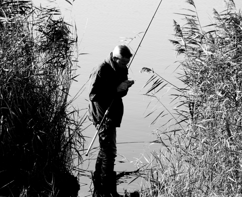 vissen -