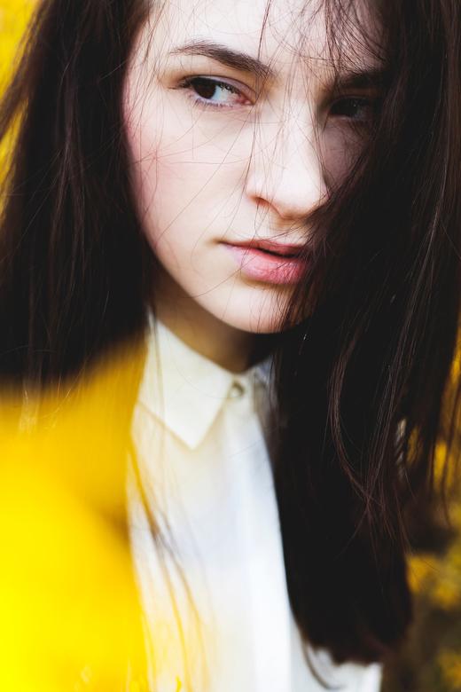 YellowSpring - Yellow