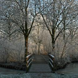 Bridge to far...