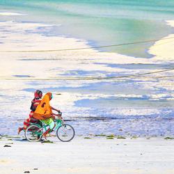prachtig Zanzibar Tanzania