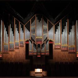 Doelen-orgel