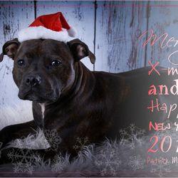 De Beste wensen!!
