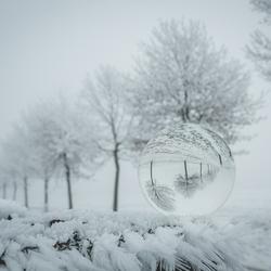 Vandaag is wit...