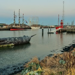 Haven Harlingen walvis.....