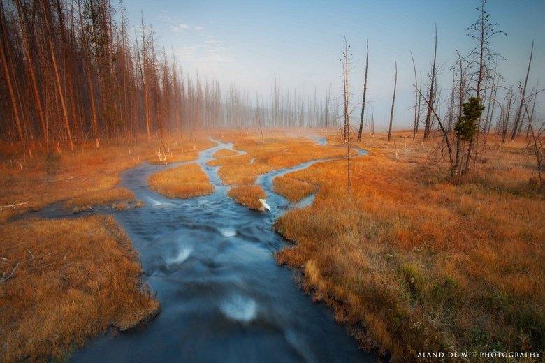 Gouden gloed - Zonsopkomst Firehole Lake omgeving, Yellowstone np, usa.