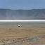 Crossing Ngorongoro Crater
