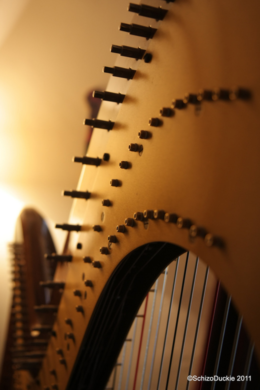 M'n eerste ontmoeting met een harp - Wat een prachtig instrument! Zo veel mooie lijnen te ontdekken, en ze hebben allemaal een functie