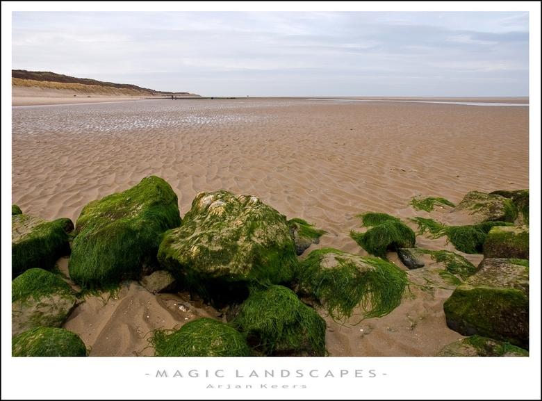 strand - stenen begroeit met zeewier, wachtend tot het weer vloed wordt..<br /> <br /> bedankt iedereen die gereageerd heeft op mijn vorige foto!<br