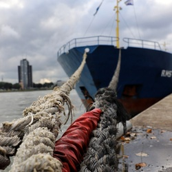 The harbour of Rotterdam