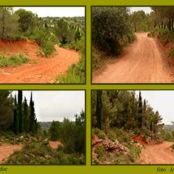 Languedoc in het rood