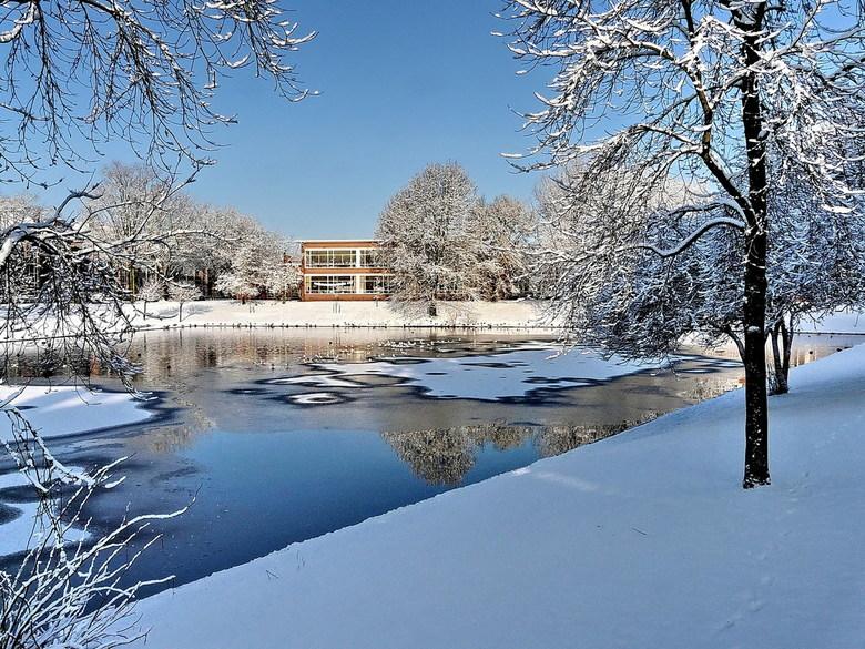 Winterpracht - Nog maar eens een foto van deze winterpracht van dit jaar. <br /> Vijver bij ons in de straat is nog nooit zo mooi geweest als dit jaa