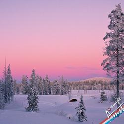 Winterlandschap in Lapland