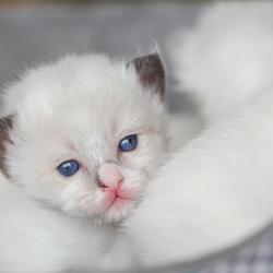 Hello world, ik ben al weer 2 weken oud