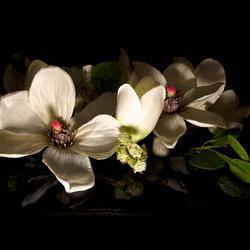 kunstbloemen in de flits