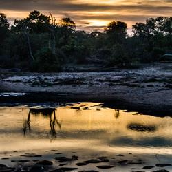 Kruger Park bij zonsondergang