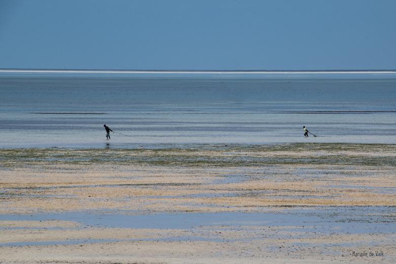Vissers - De mensen in Mozambique zijn arm en hebben dus geen boot om het water op te gaan om te vissen.<br /> Met eb slepen deze vissers hun net ach