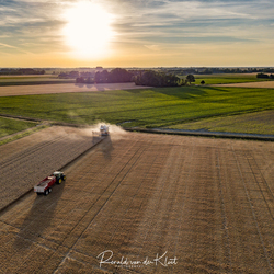 Nederlandse boeren