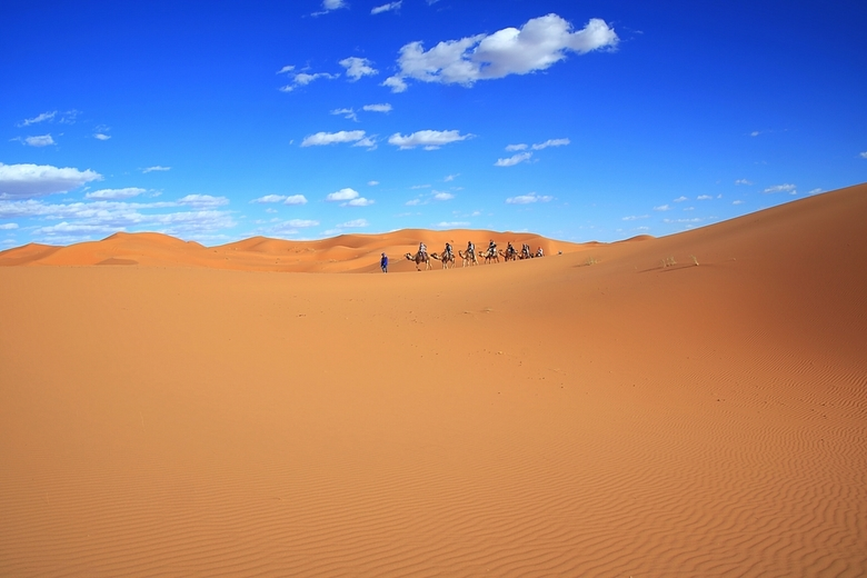 Kamelentocht Woestijn -