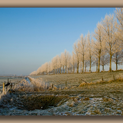 Winterlaan2