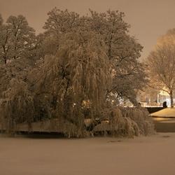 winter(be)licht