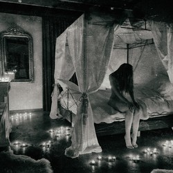 The Dreamroom
