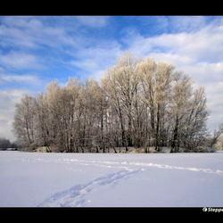 Bevroren eiland