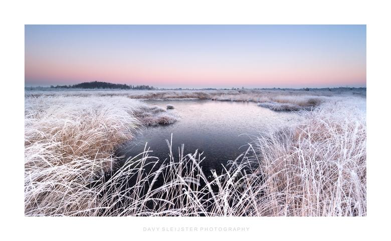 Cold morning Haaksbergerveen - Het Haaksbergerveen, een schitterend natuurgebied in Twente. Dit stuk natuurgebied is zeker de moeite waard om te bezoe