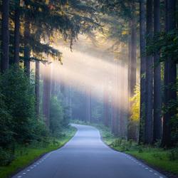Speulder road