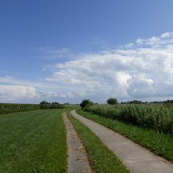 friese landschap