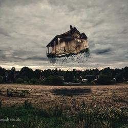 Flying through the barnyard