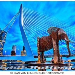 Bas van Binnendijk Fotografie