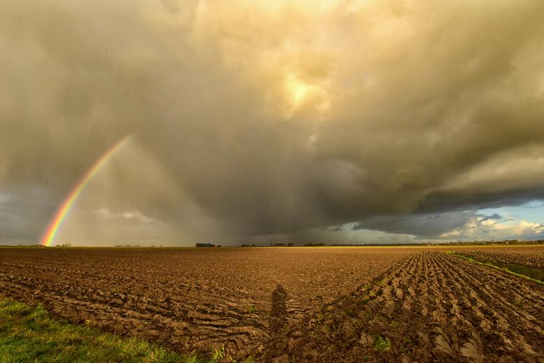 In de polder  - ten noorden van Uithuizen.