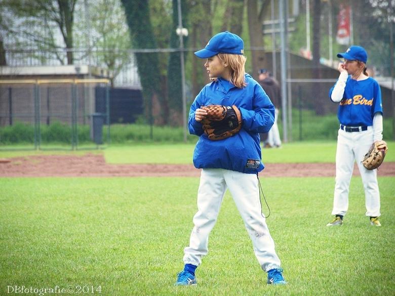 softbal - in het veld