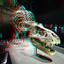 DT-Rex Naturalis Leiden 3D
