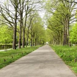 P1000856 Landgoed Ockenburg Oprijlaan 26april 2018