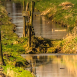 The ditch in the polder