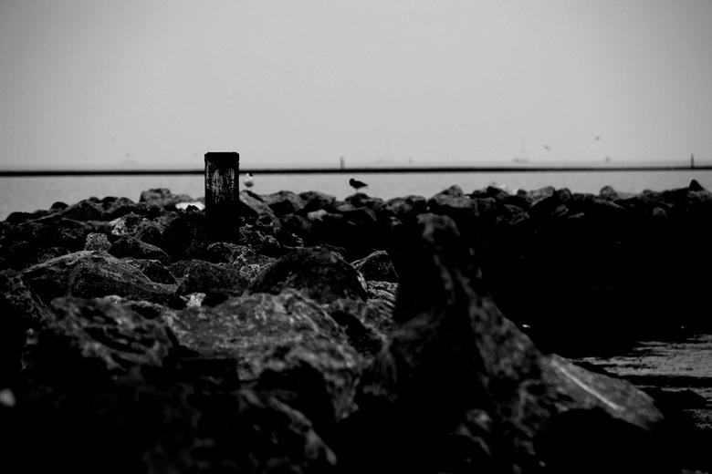 zwarte pier - een zwart wit foto van de pier op terschelling